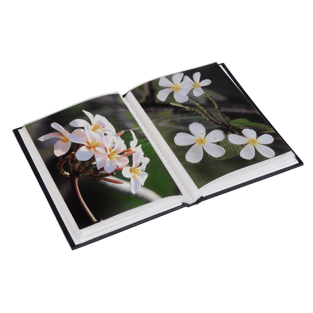 "awx High-Res Appliance - Hama, ""Birmingham"" Mini Slip-In Album, for 24 photos, size: 13x18 cm, assorted"