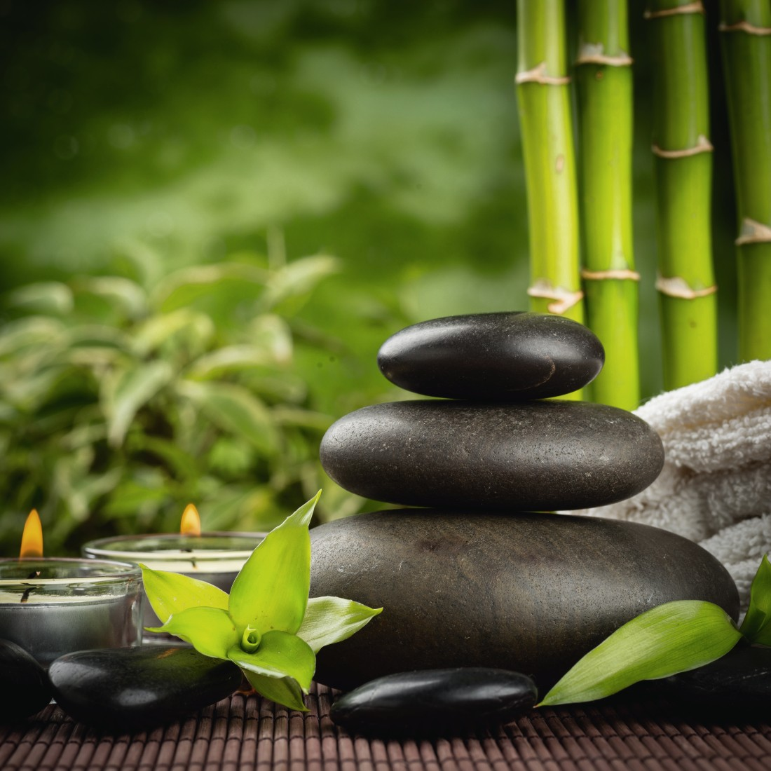 картинки природа пруд камни бамбук шедевры